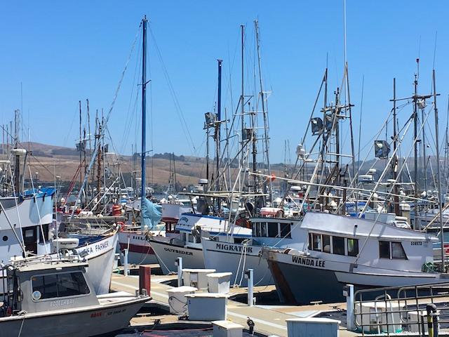 Spud Point Crab Co., Bodega BayCA